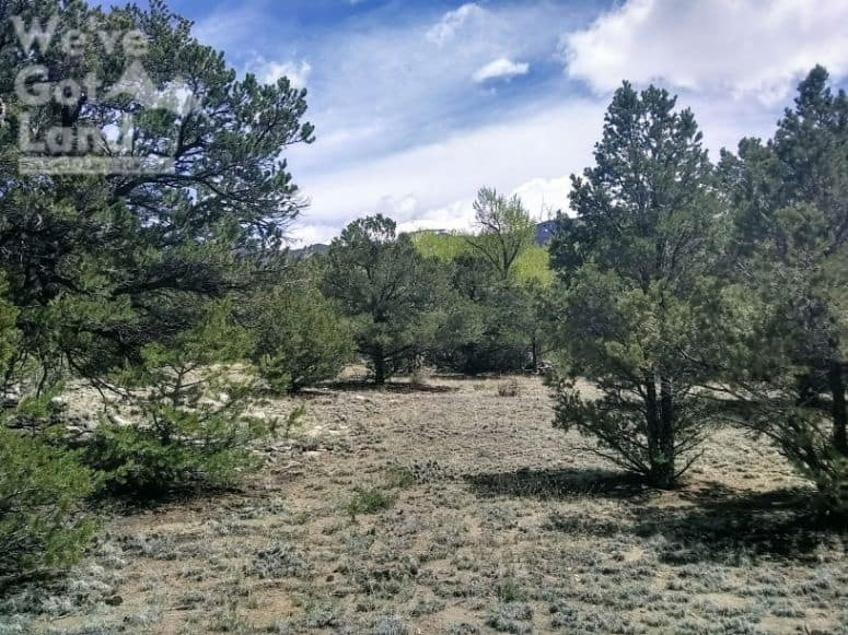 land for sale in Alamosa