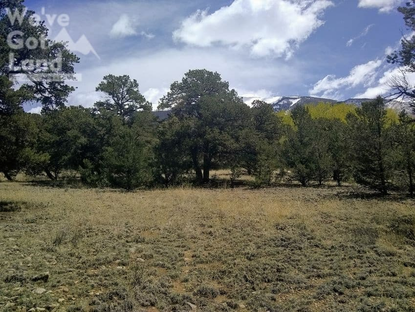 land for sale in Cedar Ridge