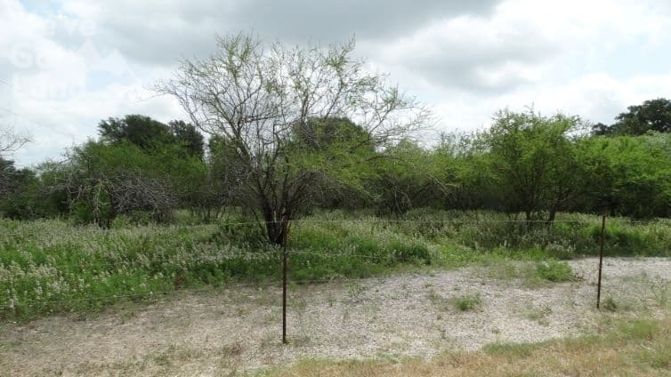 land for sale in Bee County