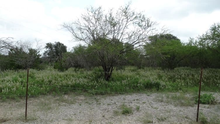 land for build dream home