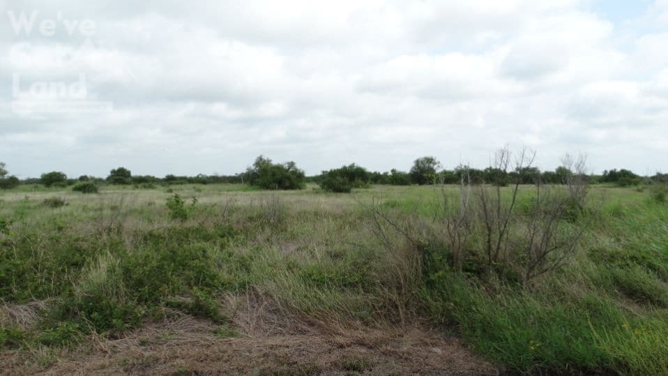 Countryside 4 Acres land for sale in Bee County Texas!