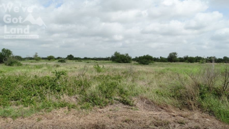 Countryside 4 Acres land for sale in skidmore