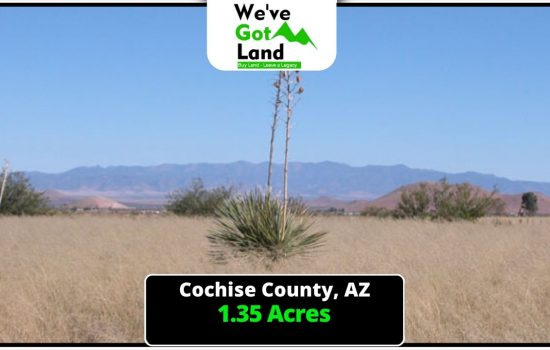 *PENDING* 1.35 Acres in Douglas, AZ
