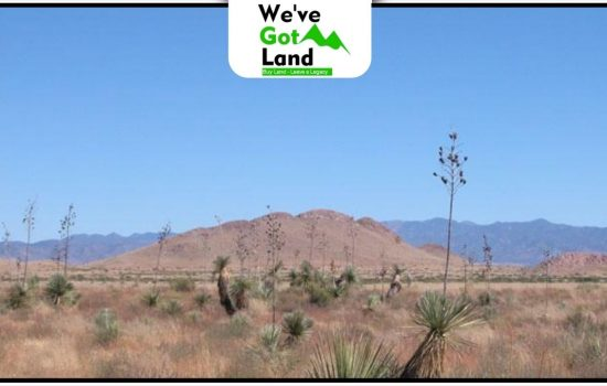 1 Acre in Cochise County, AZ
