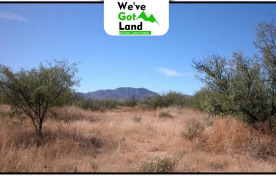 1 Acre in Cochise near Willcox, AZ