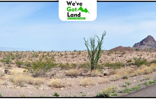 10 Acres Land in Concho, AZ