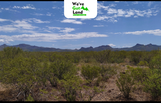 5 Acres Land in Douglas, AZ