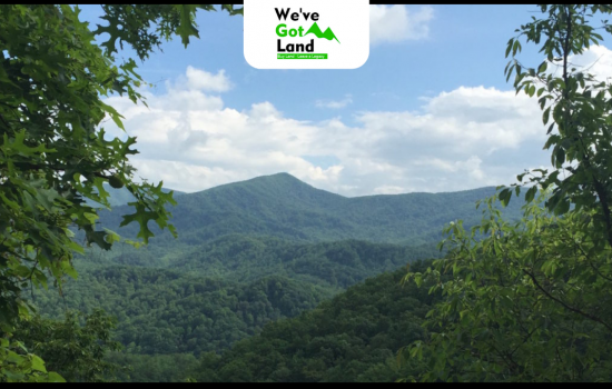 1.25 Acres land in Gilmer County, GA with no building restrictions!