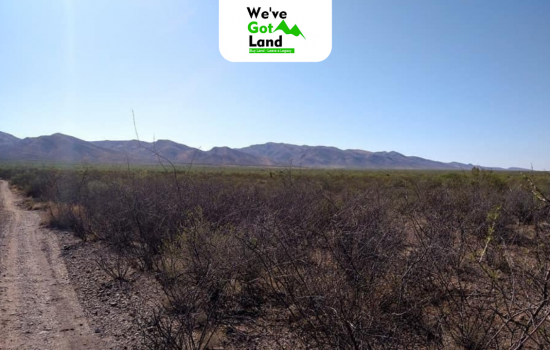 Four adjacent lots in Cochise, AZ – Priced individually – No HOA fees!