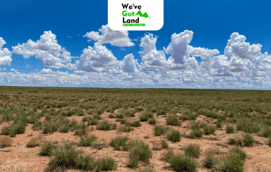 Multiple parcels in Navajo county, AZ, 1.25 acres each